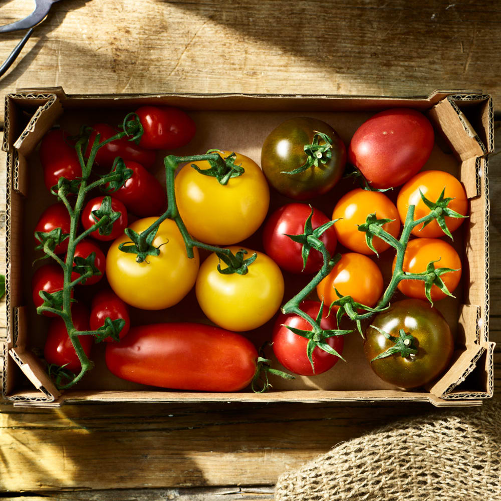 Organic Isle of Wight Heritage Tomatoes, 1kg