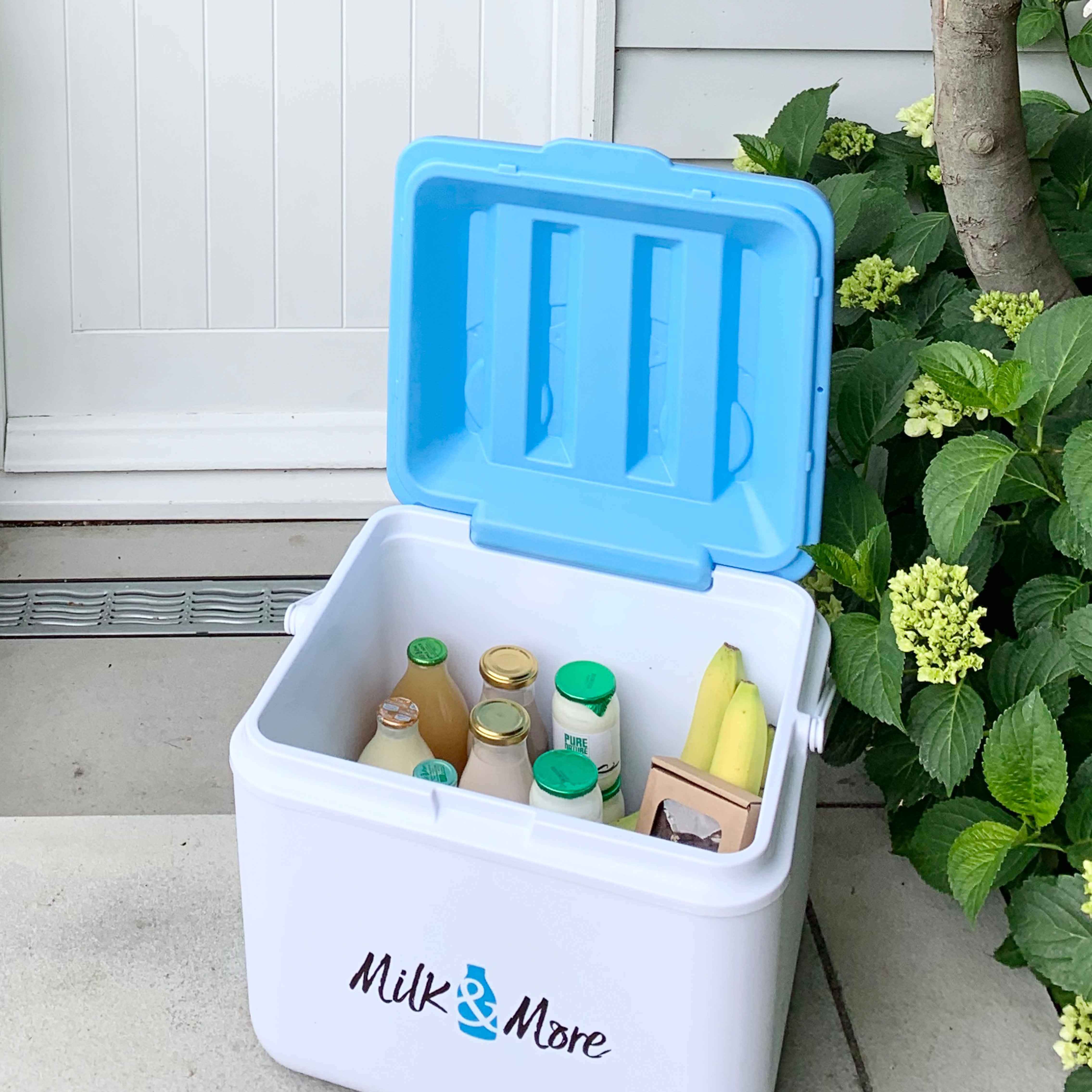 Milk & More Delivery Cool Box