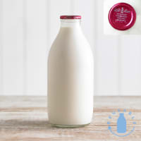 Milk & More Homogenised Whole Milk in Glass, 568ml, 1pt