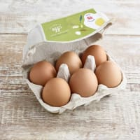 Humble Free Range Eggs, 6 Large