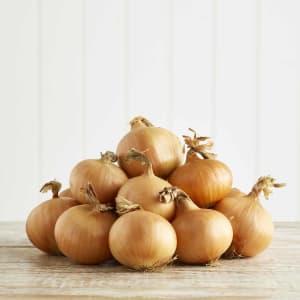 Organic White Onions, 1.5kg