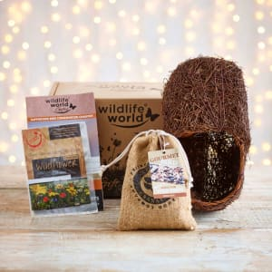 Bird Theme Gift Pack (Featuring Brushwood Robin Nester)